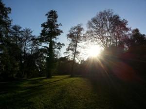 beate-bock-channel-coach-autorin-berlin-Lichtvolle Bilder-Zugang zu den geistigen Welten